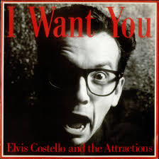 hoes-i-want-you-van-elvis-costello