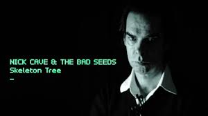 hoes Skeleton Tree van Nick Cave
